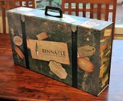 A punto de lanzar Binnakle, ¡el primer juego que fomenta la innovación!